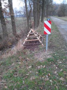 Die neue Rote-Waldameisen-Ansiedlung