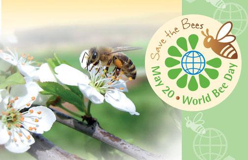 Bild: World Bee Day Initiative des Slovenischen Imkerbundes