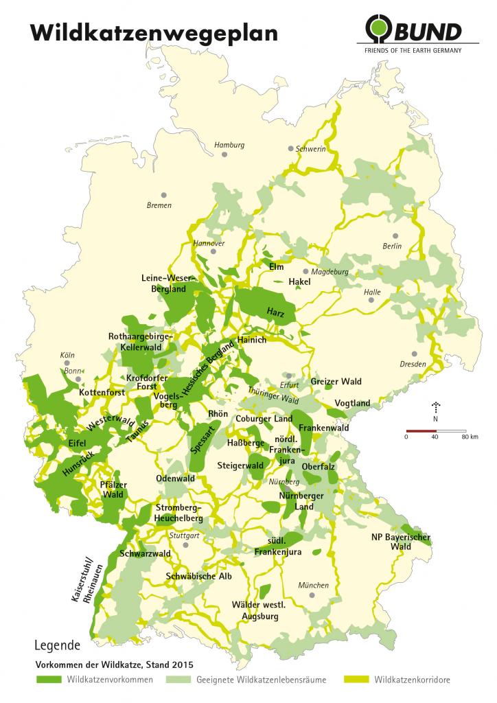 Wildkatzenwegeplan Deutschland